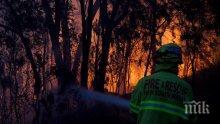 Жертвите на горските пожари в Австралия станаха четири