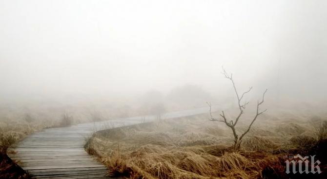 ВНИМАВАЙТЕ: Ноември е най-депресиращият месец