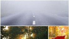 БЕЗ ПРОМЯНА: Мъгли в равнините, облаци и слаб дъжд. В планините ще има сняг. Максимални температури до 20°