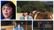 Ива Николова за патологията на лъжата: Нинова, къде я намери тая зеленина през ноември да яздиш кон?