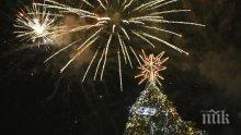 Коледната елха в София грейва на 1 декември