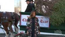 ТРЕСКА В БЕЛИЯ ДОМ: Докато Тръмп чака Бойко Борисов, Мелания посрещна елхата за Коледа (ВИДЕО)