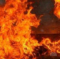 жестока смърт жена изгоря пожар дома враца
