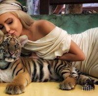 Плеймейтката Жанета Осипова гушка тигърче