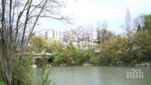 Премахват опасни дървета по дигите на река Тунджа в градския парк в Ямбол