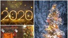 СИНОПТИЦИТЕ РАЗКРИХА: Ще има ли сняг по Коледа и Нова година