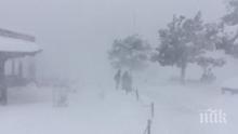 Сняг покри Гранд Каньон и остави град в Аризона без електричество