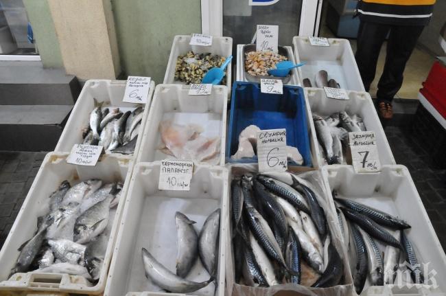 ПРЕДИ НИКУЛДЕН: Ето няколко съвета как да познаем прясна ли е рибата