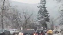 САМО В ПИК! Спряха движението от София към Своге. Пътят е заледен и не е опесъчено. Опашката е километрична (ВИДЕО)