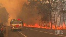 Бедствие: Пожарите в Австралия изпепелиха 70 000 хектара земя