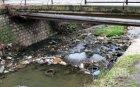 Проверяват сигнали за отровени и замърсени реки