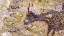 УНИКАЛНО: Скална рисунка в Индонезия се оказа на 44 000 години