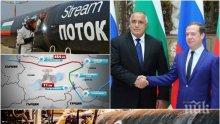 """ВОЙНА ЗА ГАЗА: Лавров потвърди лошите новини за """"Турски поток""""! Инвестицията на България от 2 млрд. лева виси на кантар заради Конгреса на САЩ"""