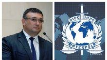 ИЗВЪНРЕДНО В ПИК TV! Шефът на ИНТЕРПОЛ Юрген Щок похвали Младен Маринов: 15-ти сте в света по пренос на данни срещу трансграничната престъпност (ОБНОВЕНА)