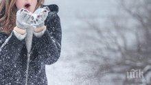 Гърците в паника - сняг заваля над страната