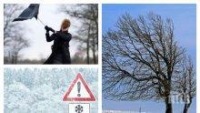 ЗИМАТА НАСТЪПВА: Сняг ще трупа в Северна България и планините, температурите ще паднат до минус 3 градуса