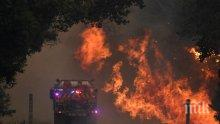 БЕДСТВИЕ! Австралия свиква 3000 военни от резерва заради горските пожари