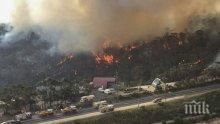 Премиерът на Великобритания предложи помощ на Австралия за справяне с горските пожари