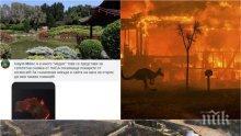 ДРУГАТА ИСТИНА: Българи в Австралия обявяват пожарите за преекспонирани - ето какво пишат от първо лице