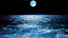 ТРЕВОГА: Температурата на океаните е рекордно висока