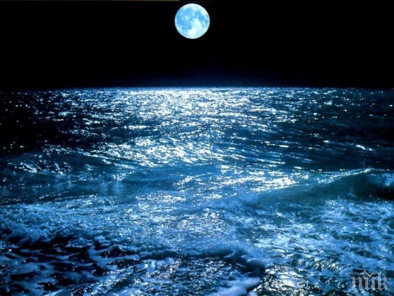 КАКВО СЕ СЛУЧВА?! Температурата на океаните достигна рекордно високо ниво