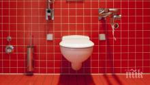 КУРИОЗ: Искат наем от 1625 паунда месечно, за да спите с тоалетна чиния до главата