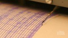 Земетресение с магнитуд 4.8 по Рихтер бе регистрирано на Камчатка