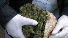 Съдят наш контрабандист, опитал да пренесе през граница марихуана за 44 800 лева
