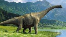Учени казаха причината за изчезването на динозаврите