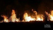 Напълно потушен е пожарът, който обхвана част от Драгоманското блато