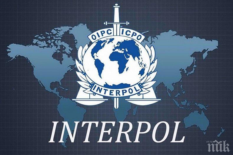 Мега операция на Интерпол, спасиха десетки жертви на трафик на Балканите