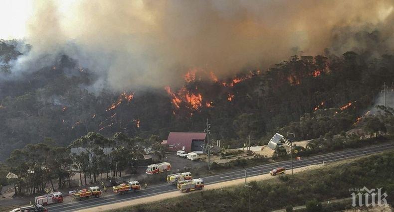 Изчезна самолет, участвал в гасенето на пожарите в Австралия
