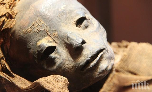 НЕВЕРОЯТНО, НО ФАКТ: Мумия на 3000 години проговори (ВИДЕО)