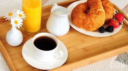 нов сутрешен хит кафе изплюто прилеп