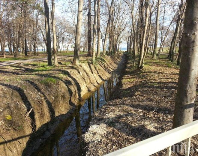 Мащабна акция: Почистват деретата във Варна