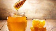 """Обмислят """"Училищен плод и мляко"""" да включва и български мед"""