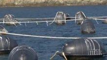 Рибари сигнализират за замърсяване от мидена ферма край Приморско