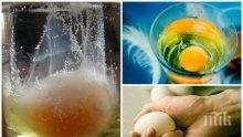 Маг Вероника: Ако намерите сапун, пирон или тамян – имате магия за смърт!