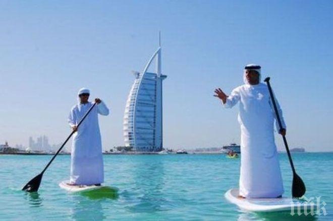 ОАЕ с първата АЕЦ в арабския свят - Информационна агенция ПИК