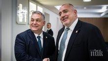 Борисов обсъди с Орбан преговорите за новия бюджет на ЕС