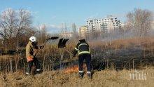 Вятърът запали пожар край автоморги и сервизи в Пловдив (СНИМКИ)