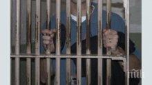 Пет години затвор за заплаха с нож и кражба