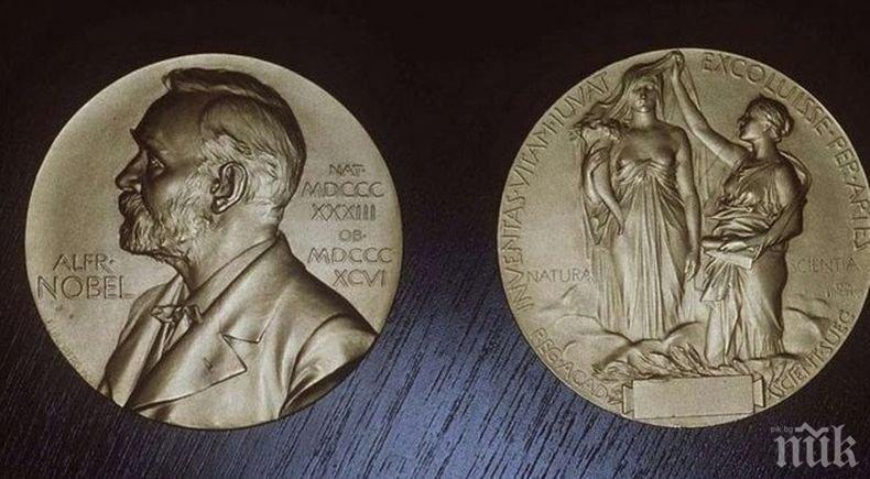 317 номинации за Нобелова награда за мир