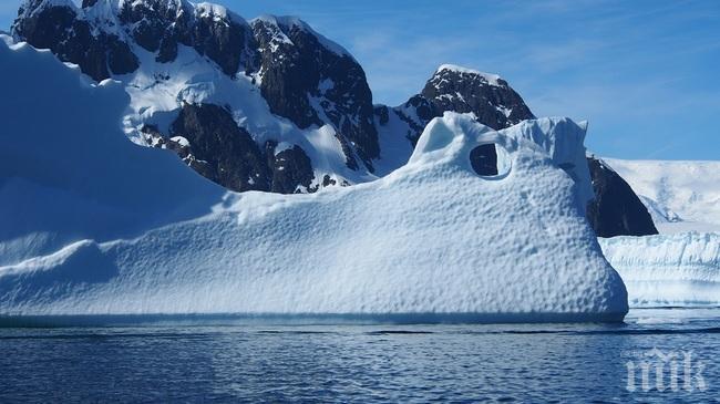 Заразени с коронавирус няма само на Антарктида