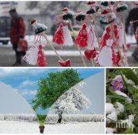 АКТУАЛНА ПРОГНОЗА! Синоптици разкриха какво ще е времето през март - продължава ли топлата зима или баба Марта ще ни изненада