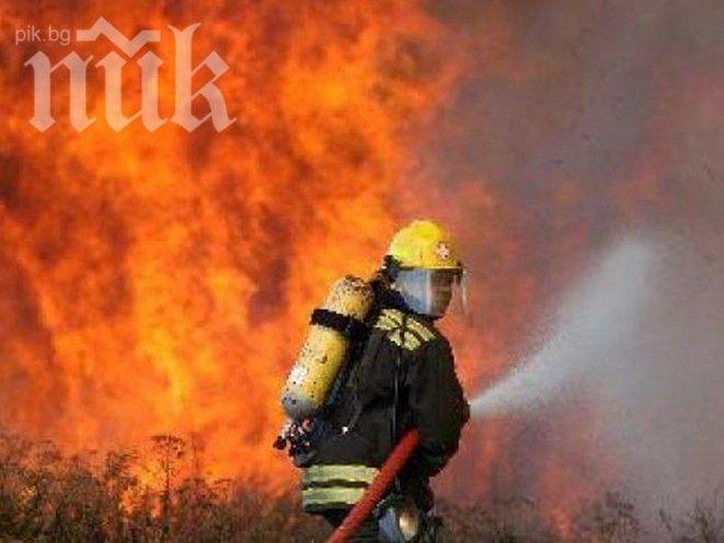 Голям пожар бушува в Кюстендилско