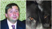 НАСРЕД КОРОНАВИРУСА: БТВ активирани да разследват смъртта на... кучето на Прокопиев. Което се шляе в парка без каишка и нахлува в частен имот...