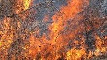 Пожар пламна в планината край село Плана