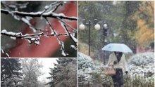 ЖЪЛТ КОД: Сняг пада в 12 области, духа силно и навява, 4 бала вълни (КАРТА)