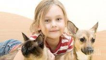 ЛЮБИМЦИ: Котките и кучетата са полезни за емоционалното равновесие на децата